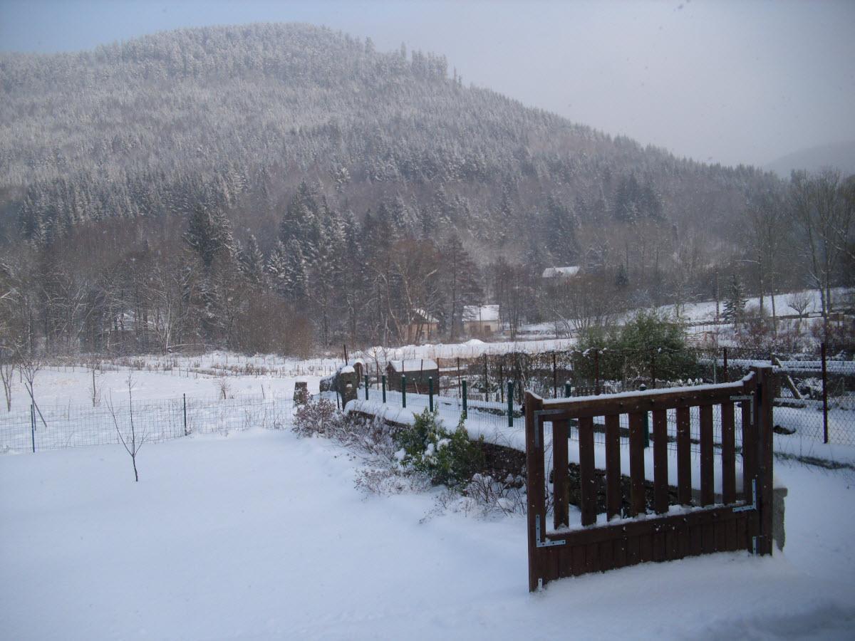 Jardin charlotte en hiver petites annonces for Jardin anglais en hiver